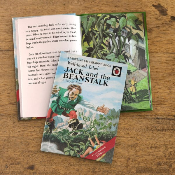 Ladybird Jack and the Beanstalk book